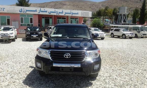 Buy Used Toyota Land Cruiser Black Car in Kabul in Kabul