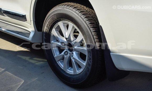 Buy Import Toyota Land Cruiser White Car in Import - Dubai in Badakhshan