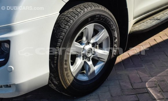 Buy Import Toyota Prado White Car in Import - Dubai in Badakhshan