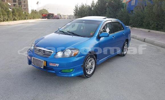 Buy Used Toyota Corolla Blue Car in Kabul in Kabul