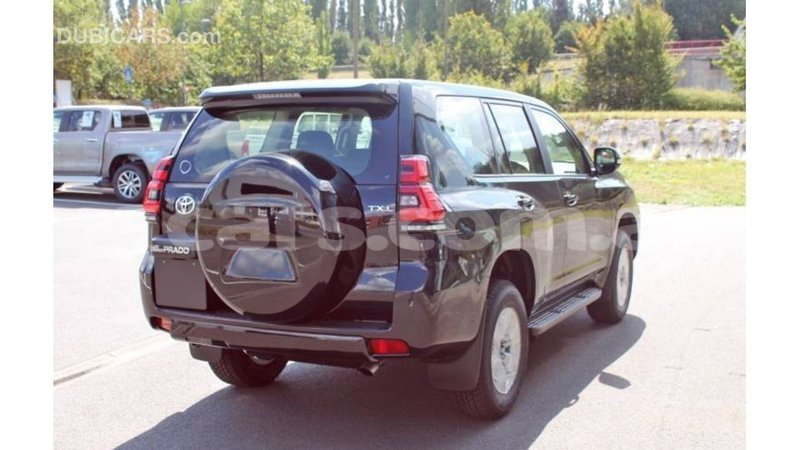 Big with watermark toyota prado badakhshan import dubai 3204