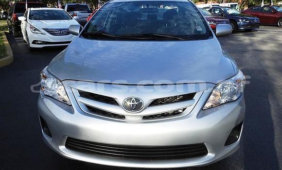 Buy Used Toyota Corolla Silver Car in Kabul in Kabul